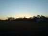 Solnedgang over australske sauer